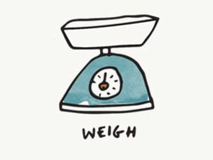 web design tool - scale